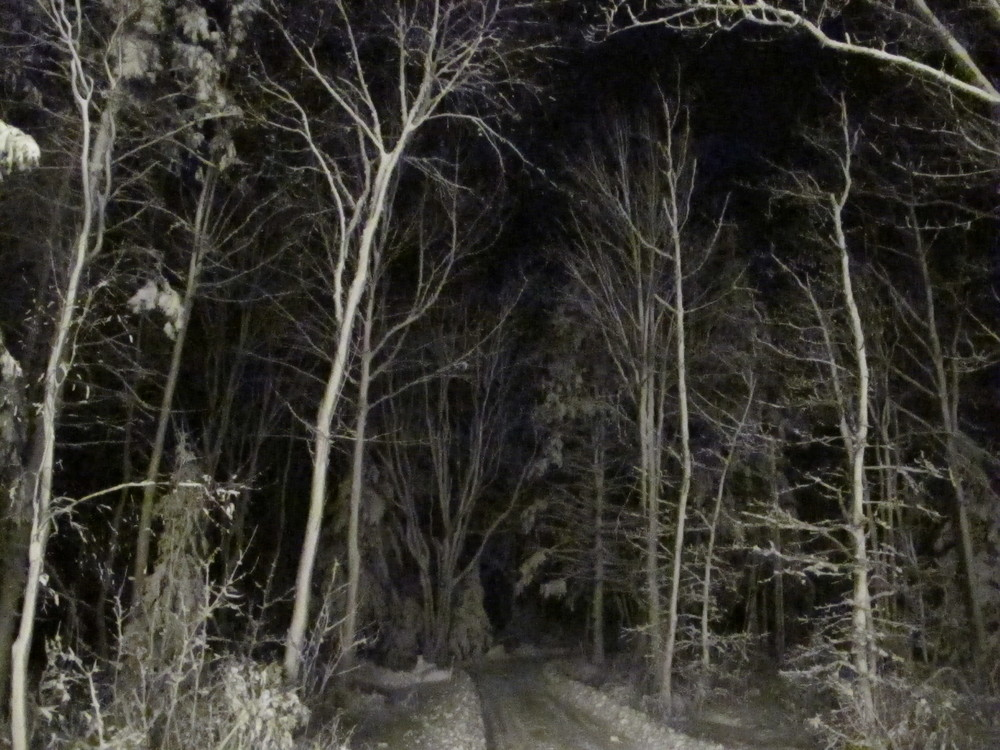 Last night's snowy scene—almost a photo negative—made a flash impression that got me thinking.