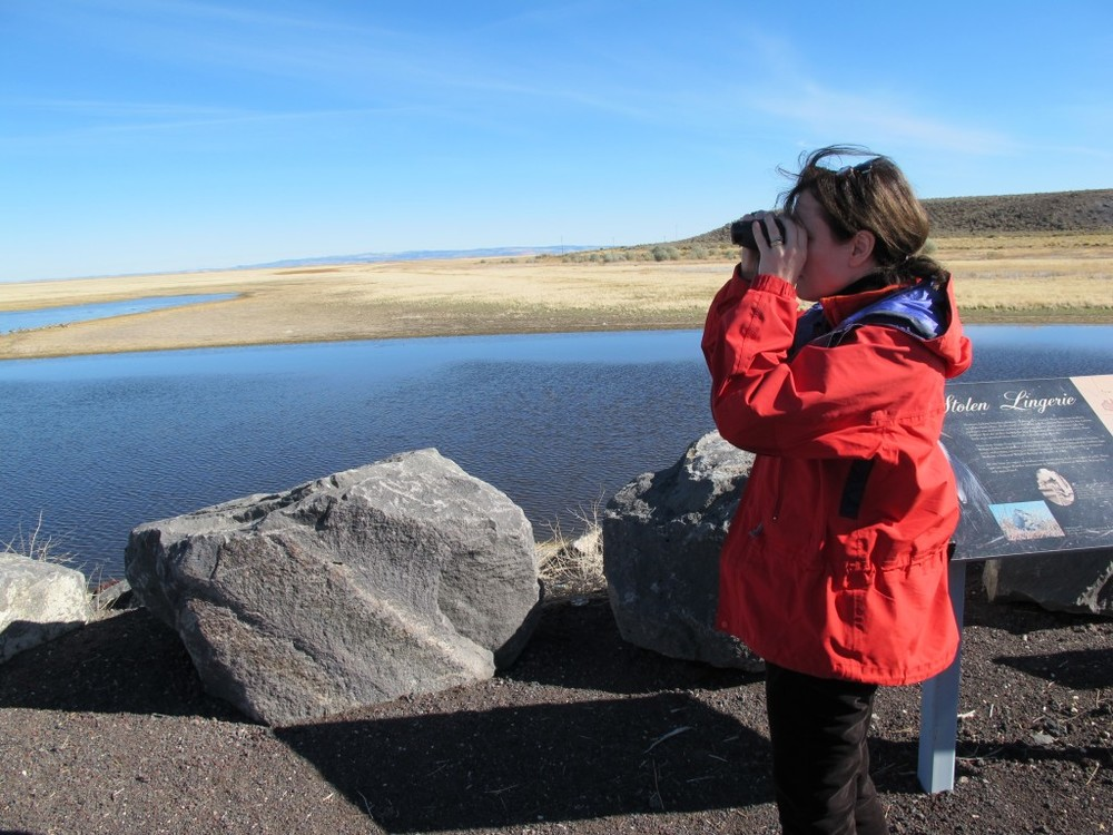 Despite being under the weather, Pamelia soldiered on, here looking for birds at Malheur National Wildlife Refuge.
