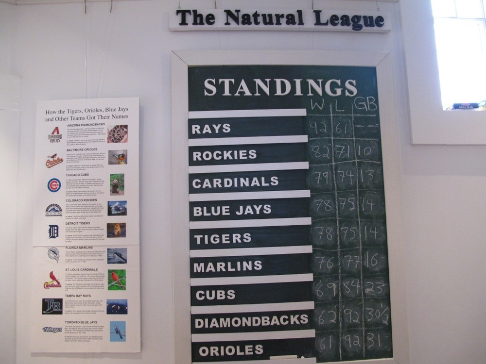 The Little Green Monster scoreboard, a fixture at the Notebook, keeps track of the nine major league baseball teams with names taken from nature—what we call The Natural League.