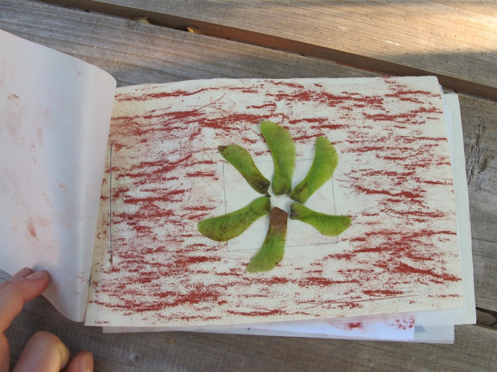 Some of the 13 artists incorporated nature in their work, which they hand-stitched together into notebooks at day's end. Did you know that those maple whirligigs are edible if properly cooked, and that if you split the thicker seed part you can stick one onto the tip of your nose and look like a rhinoceros?
