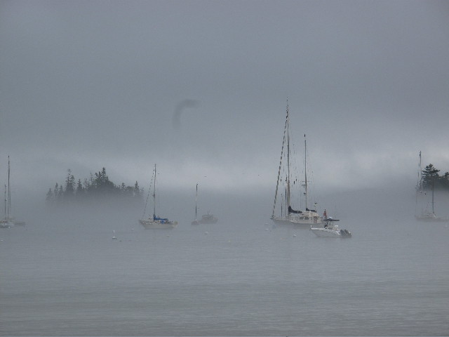 Seal Harbor on a foggy afternoon (excuse the huge piece of dust on the camera lens).