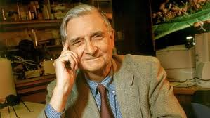 EDWARD O. WILSON, biologist, world-leading ant expert and two-time Pulitzer Prize-winning author of 28 books, including The Ants, On Human Nature and Letters to a Young Scientist; research professor emeritus of biology at Harvard.