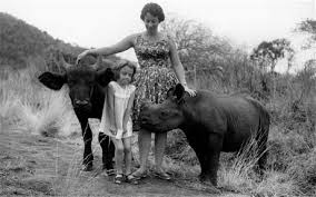 DAPHNE SHELDRICK , conservationist, elephant expert and author of   Love, Life, and Elephants: An African Love Story