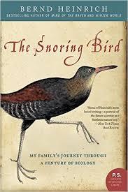 The Snoring Bird