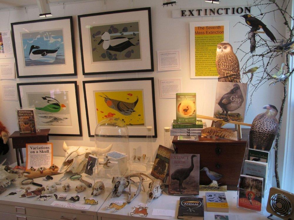extinction2010d.jpg