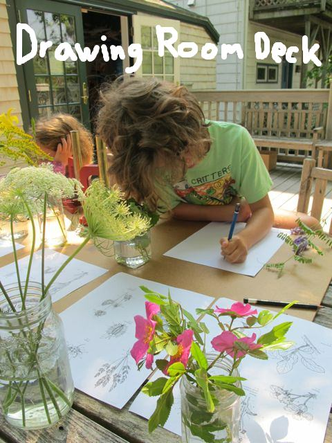 The tree-shaded deck is a hub for sketching, painting, talks, workshops and quiet relaxation.