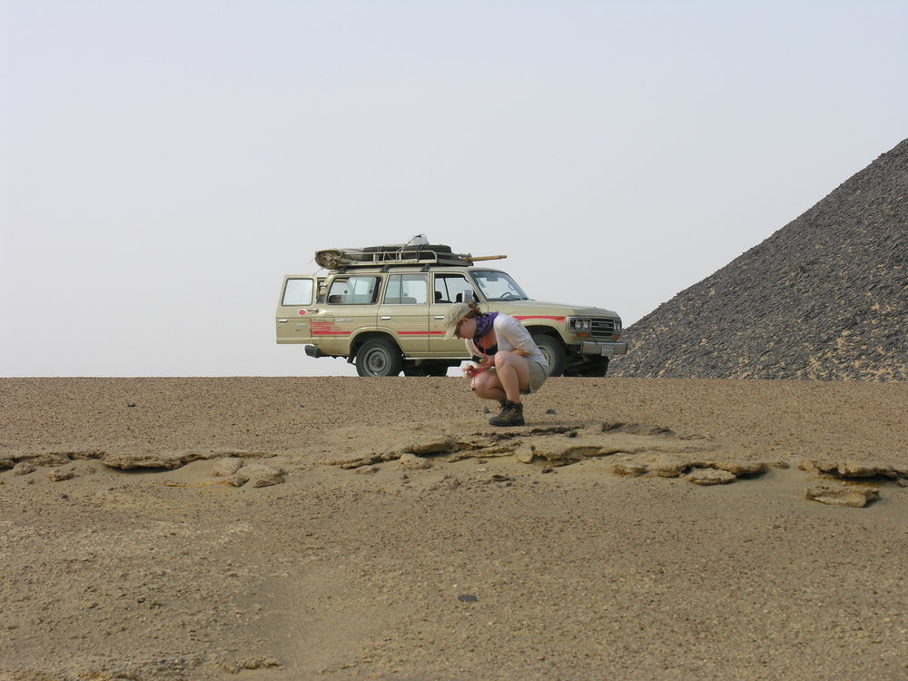 Searching for fossils in the Fayum Depression, Egypt.