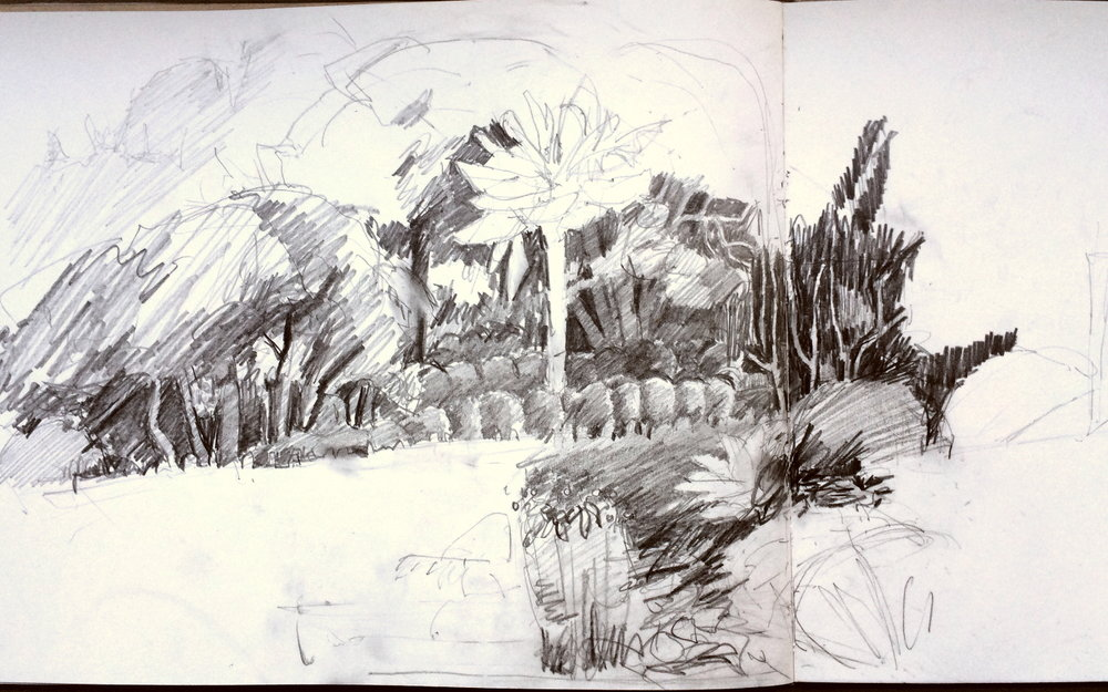 Ella Clocksin (2016) early stage of sketchbook drawing at Overbecks National Trust garden.