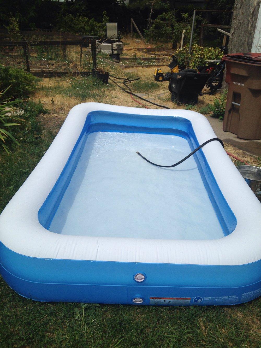 Inflatable pool, $19.95, backyard, Spencer Roddan's home, Salt Lake City, Utah, August 8, 2017.