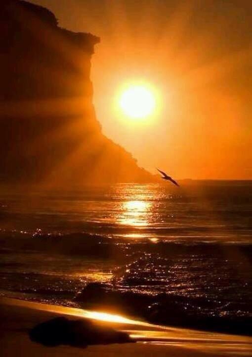 Potentialen finns inom dig   Det går inte att veta vad man är förmögen till att göra så länge man inte anstränger sig till det yttersta. Skjut inte upp det som ska göras idag tills imorgon. Leta inte efter ursäkter och undervärdera inte din förmåga. Potentialen finns där inom dig. Allt du behöver göra är att ta fram den och agera med handlingens kraft!  - Hamon