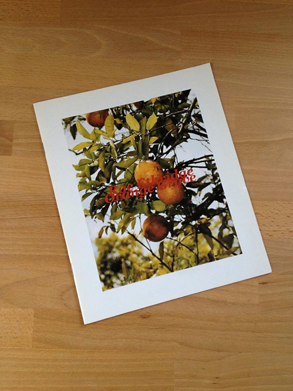 disturber-magazine: Roe Ethridge Orange Grove RARE Monograph Self Published, 2005