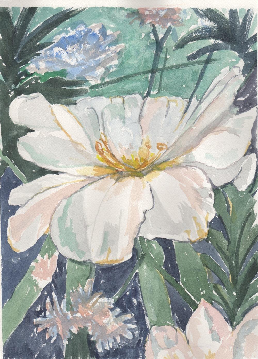 White Blossom 1.jpeg