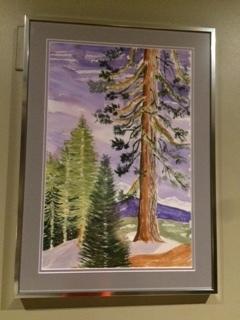 Jan's Lone Pine