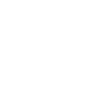 Team Pizza Racers