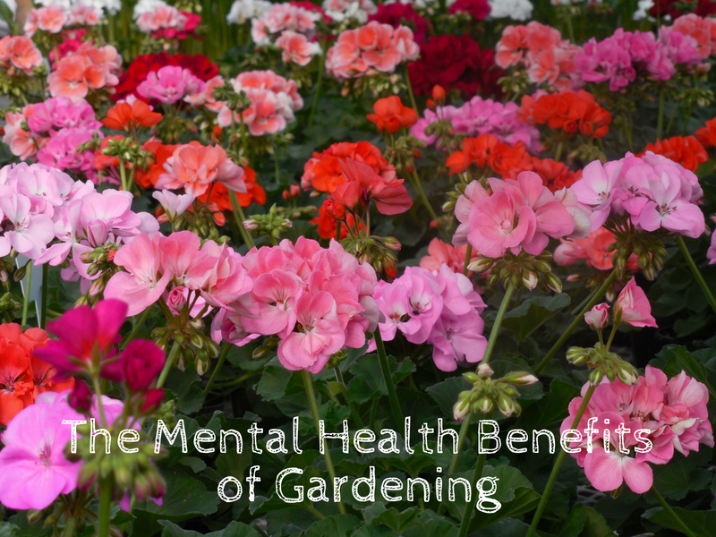 The Mental Health Benefits of Gardening.png