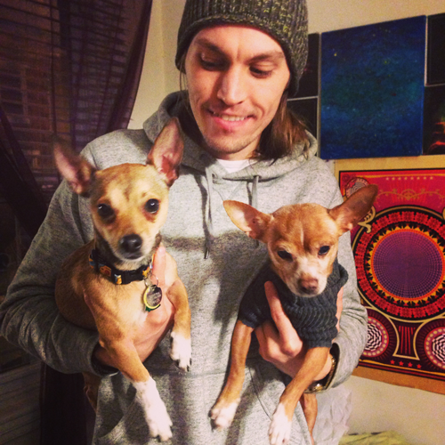 AJ hanging out with chihuahuas Rooney and Zizzybaluba.
