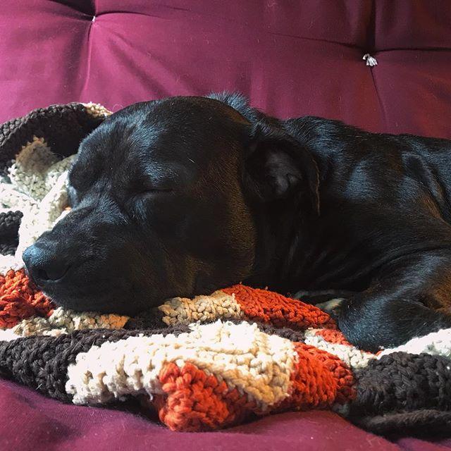 Sleepy bb 😌😌😌
