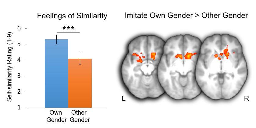losin et al. (2012)  Social cognitive & Affective Neuroscience