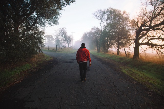 brisk nature walk
