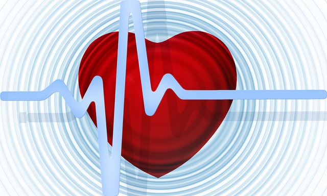 importance of heart health