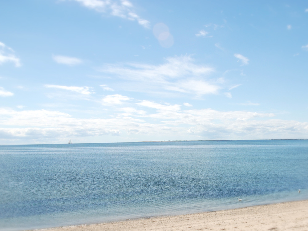 Shore2.jpg