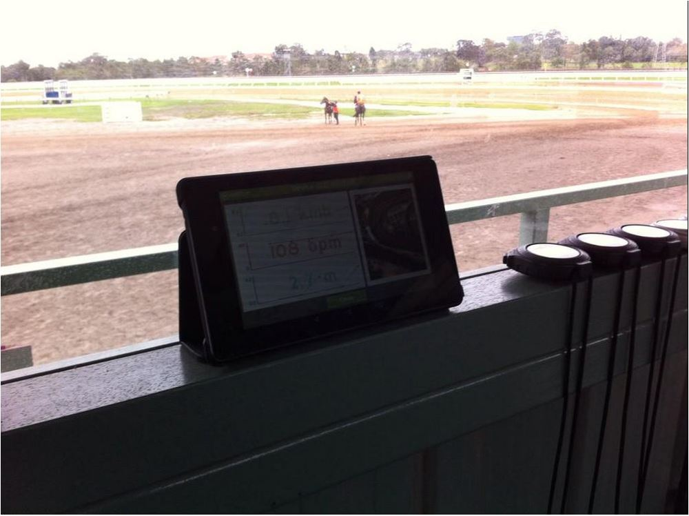 EQUINITY LIVE ON TRACK AT FLEMINGTON RACECOURSE