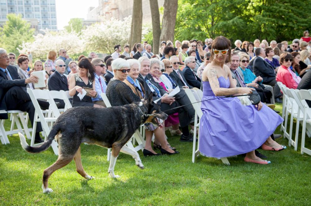 Wedding videographer Chicago.jpg