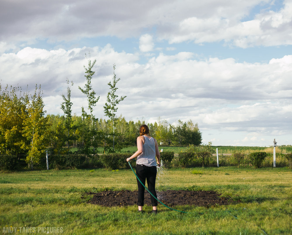 A photo of a girl watering a patch of dirt in a field