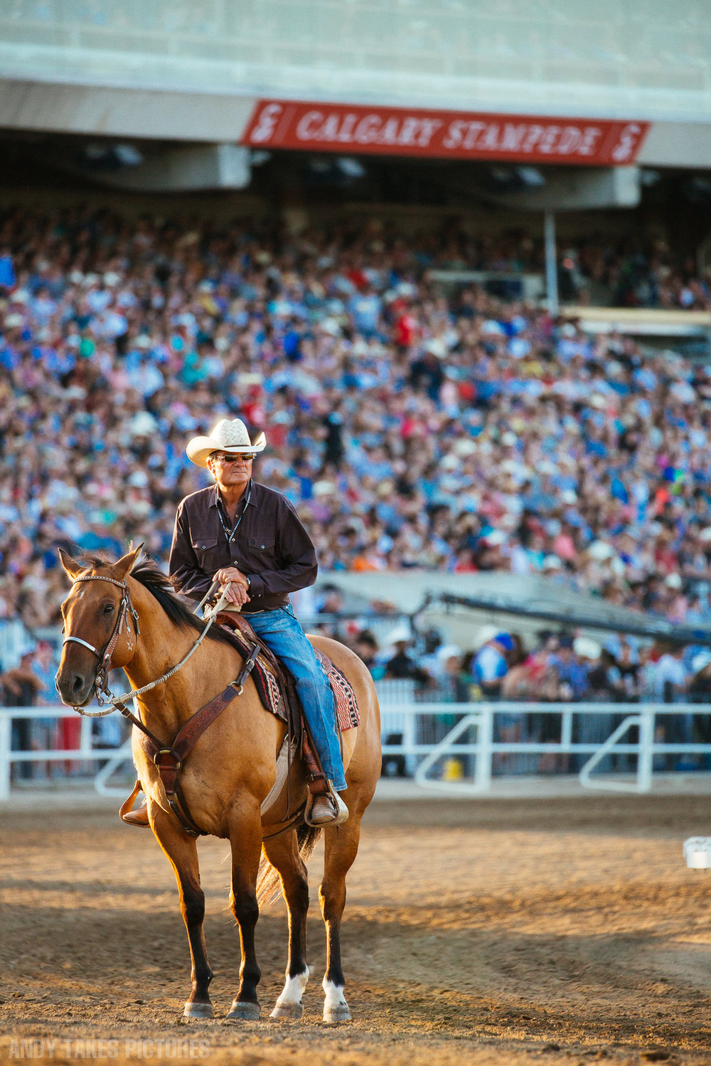 A photograph of a cowboy on a horse on the chuckwagon track at the Calgary Stampede. Behind him is a packed audience. He is standing in a sunbeam.
