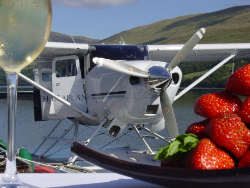 Strawberries plane champagne.jpg