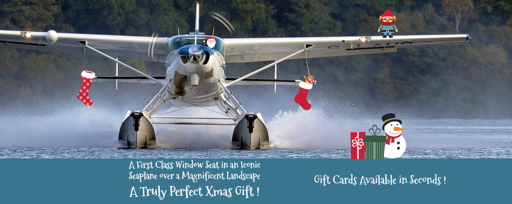Basic Gift Card Blue Band - for mobile but xmas deco.jpg