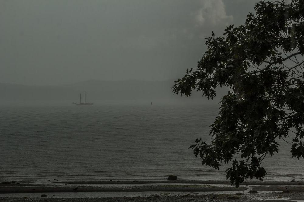 A LOT of rain.