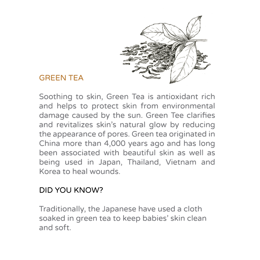 Marin Bee Ingredients Green Tea.jpg