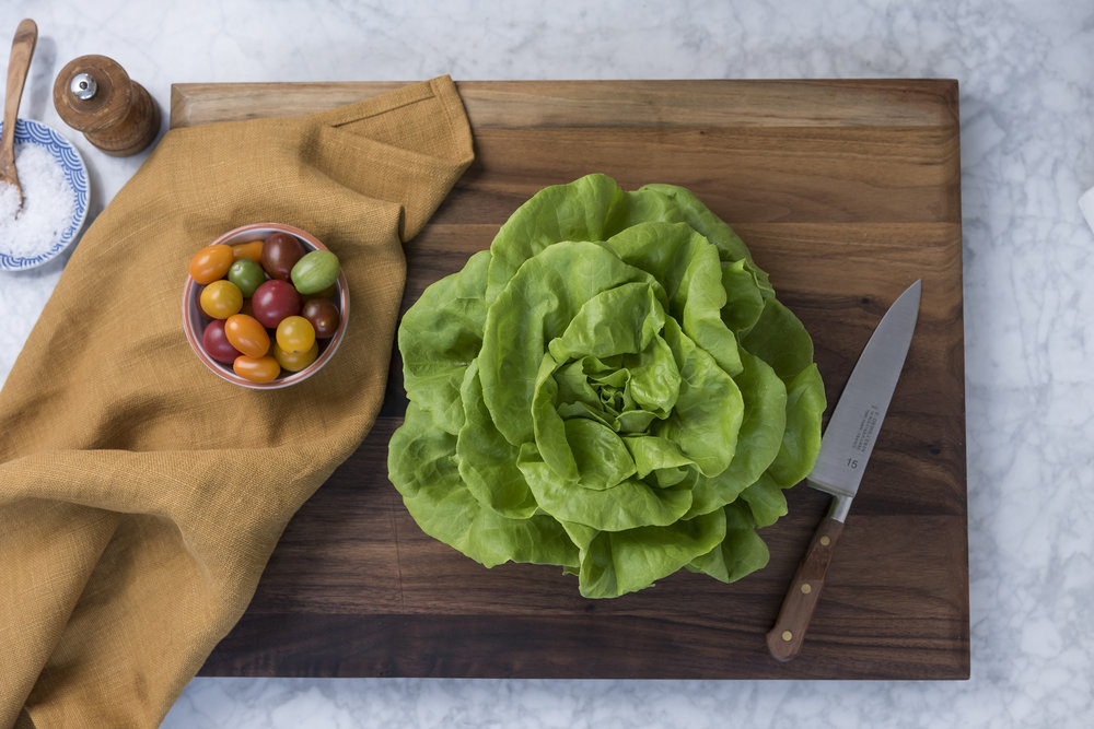 T&A_Family_GreenhouseButterLettuce-112-Edit.jpg