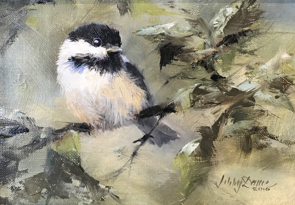 """Black Capped Chickadee"""
