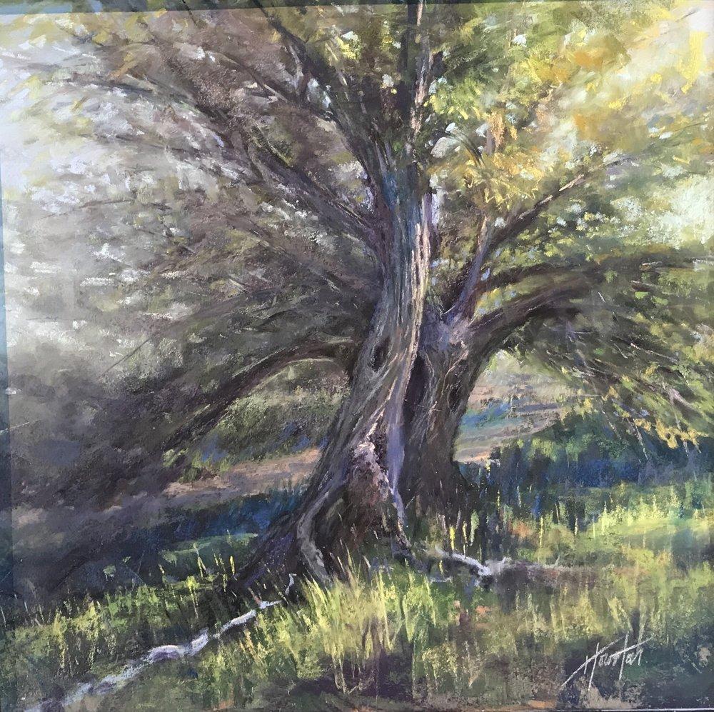 """Vinyasa Flowing Trees"""