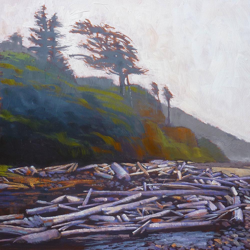 """""""Beach Logs"""""""