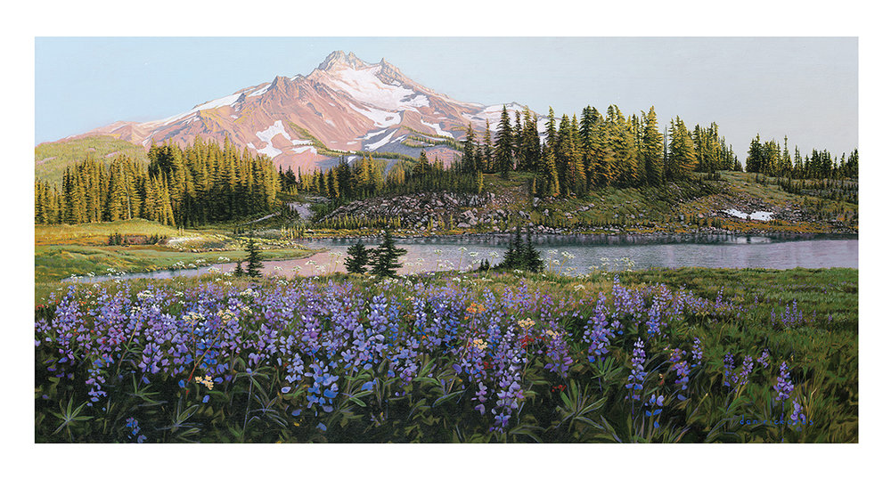 """Lupine in Bloom"" Original Acrylic on Canvas by Dan Rickards 7,900"