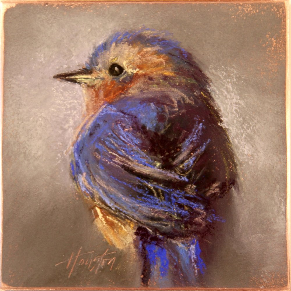 """Another Stoic Bluebird"" 8x8, Pastel on copper $550"
