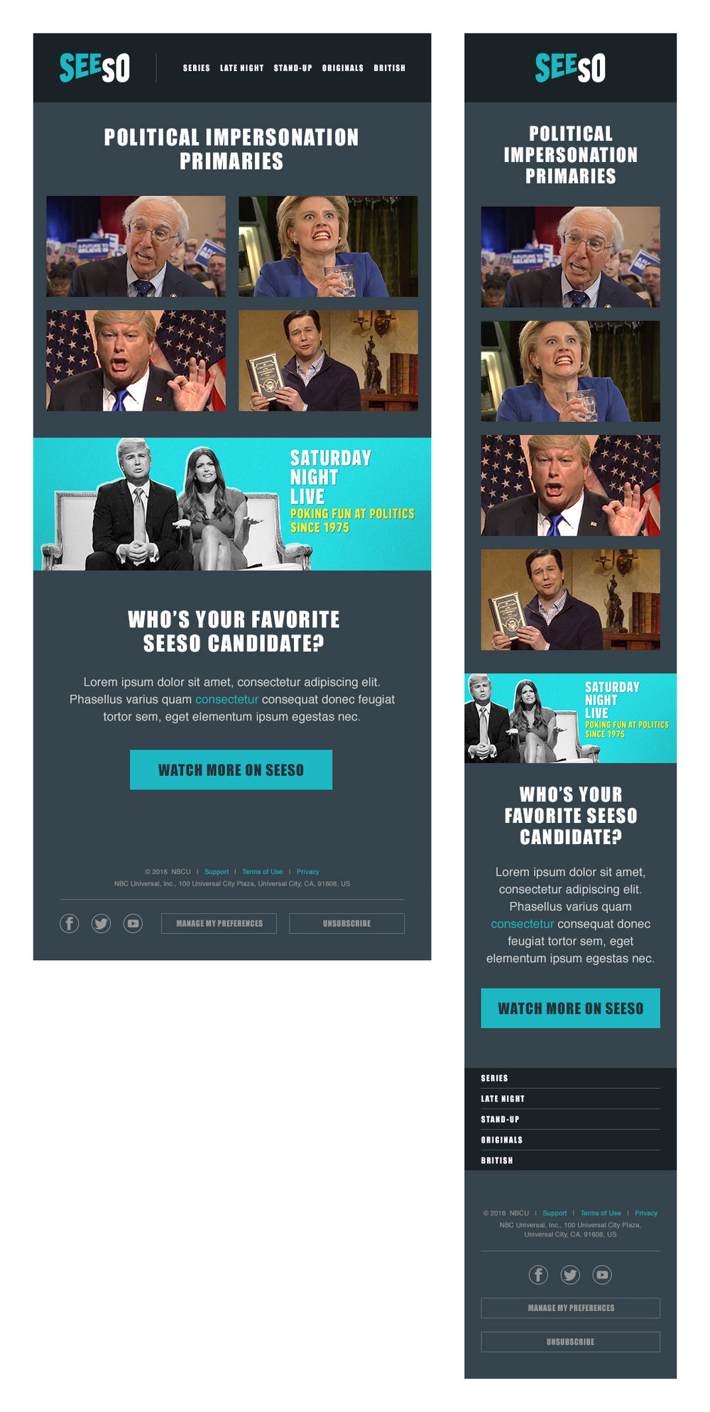 Responsive_EmailCampaign.jpg
