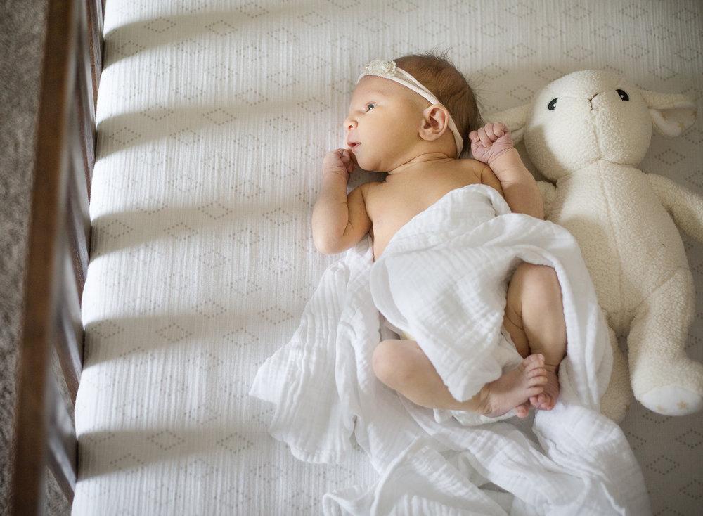 NewbornPortfolio-35.jpg