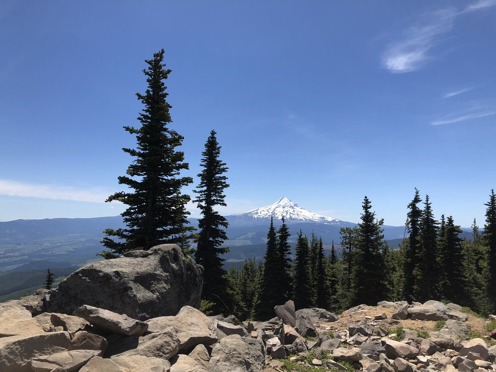 Mt. Hood from the Mt. Defiance summit.