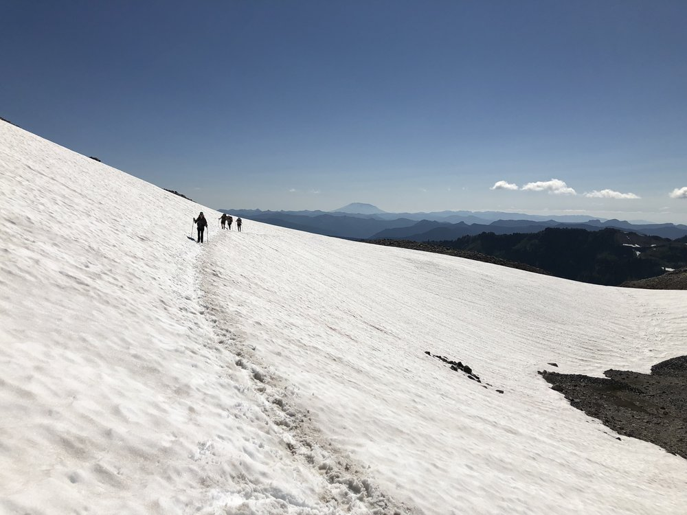Crossing a snowfield with Mount St. Helens in the background.