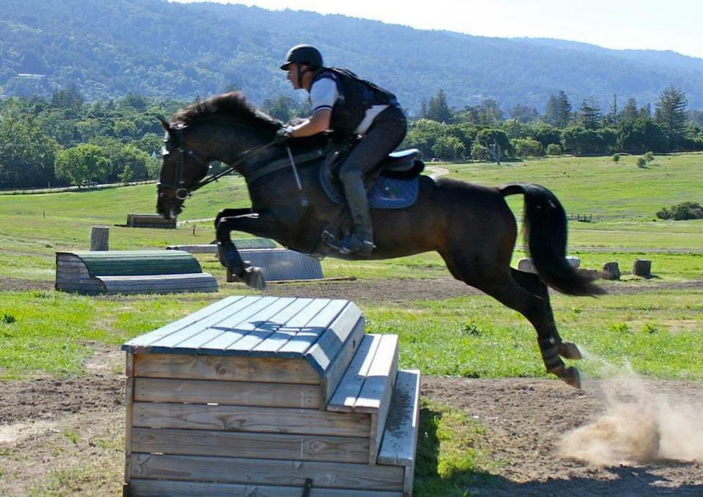 Alectra jumping Prelim table at Woodside.jpg