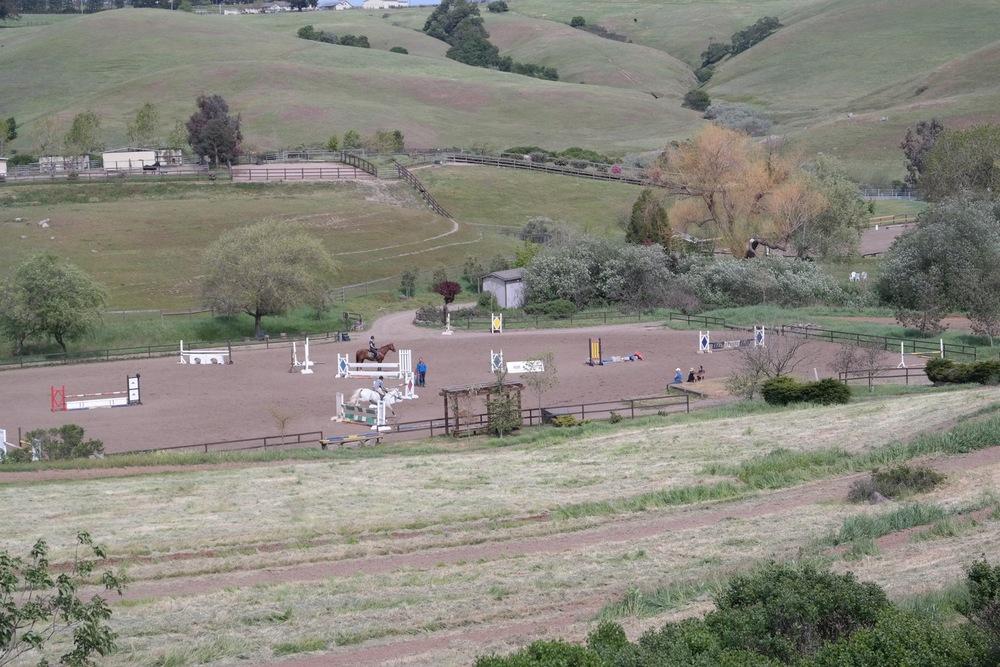 Jump Field.jpg