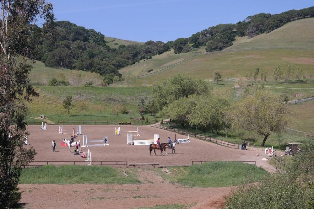 Lori's Jump Field lesson .jpg