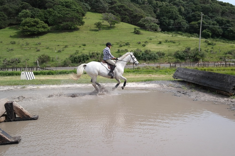 David & Finn gallop the water.jpg