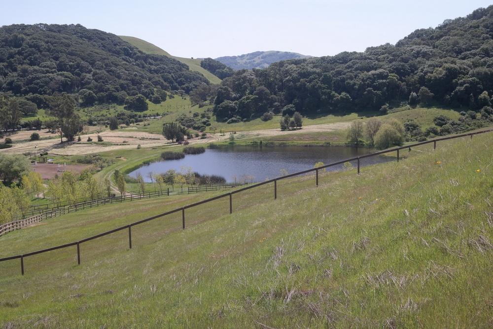 Pond from w.tank trail.jpg