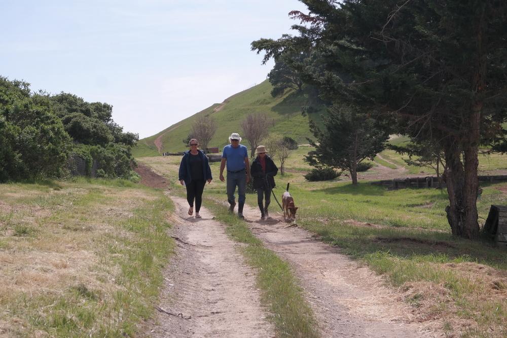 walking on Walking the trails.jpg