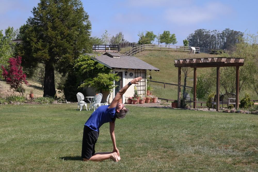 Vickie leading yoga class MH & arbor**.jpg